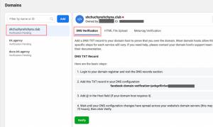 step 3 - choose DNS verification